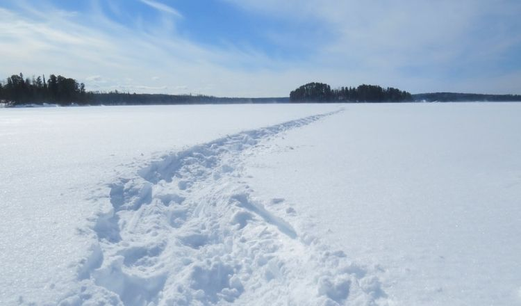 vandra på vintern